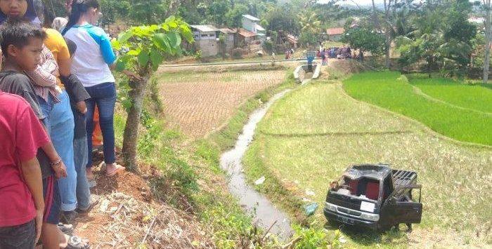 Mobil rombongan pengantin yang terun ke sawah di Purwakarta (ist)