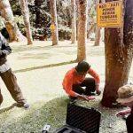 Pengecekan-Pohon-di-KRC