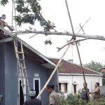 Pohon-Tumbang-di-Sukabumi