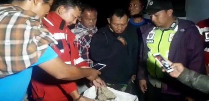 Evakuasi sarang tawon vespa dari rumah warga di Sukabumi (ist)