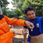 Ular yang ditangkap petugas di Kabupaten Sukabumi (ist)