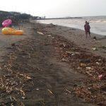 Eceng gondok dan sampah memenuhi bibir Pantai Sedari