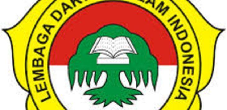 Logo LDII./Foto: Istimewa