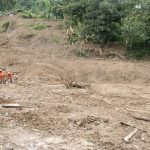 Lokasi pencarian korban longsor di Sukajaya