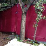 Polisi Bongkar Makam Almarhum Lina