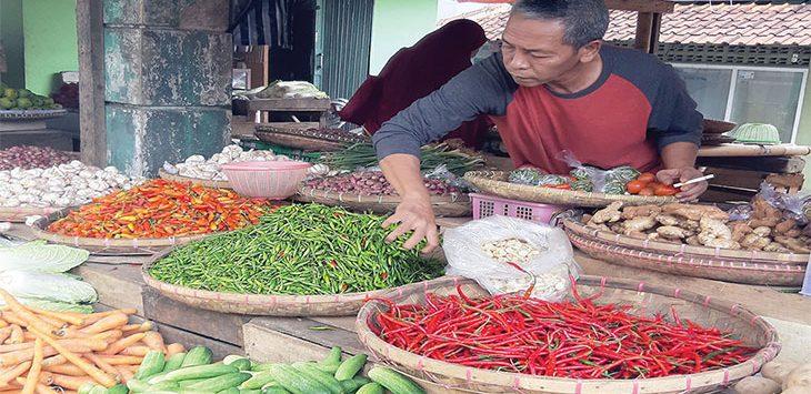 Salah seorang pedagang sayuran saat menjajakan dagangannya di salah satu pasar tradisional Kota Sukabumi.
