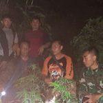 Polisi dan TNI mengamankan pohon ganja untuk dibawa ke Satnarkoba Polres Garut
