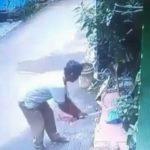 Pelaku pemukulan kucing hingga tewas di Kota Bekasi yang terekam kamera CCTV