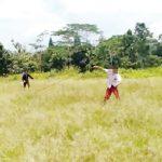 Tawuran-Pelajar-SD-di-Sukabumi