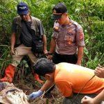 Mayat wanita yang dibunuh dan diperkosa lalu dibuang di Hutan Gunung Halu (ist)