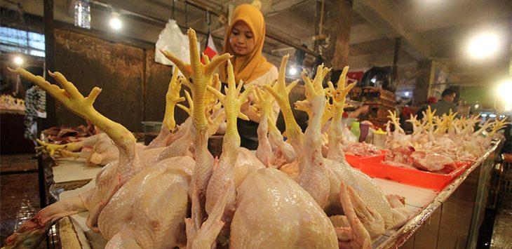 Pedagang ayam melayani pembeli di lapak dagangnya di Pasar Depok Jaya, Kecamatan Pancoranmas, Rabu (15/4/2020). Radar Depok