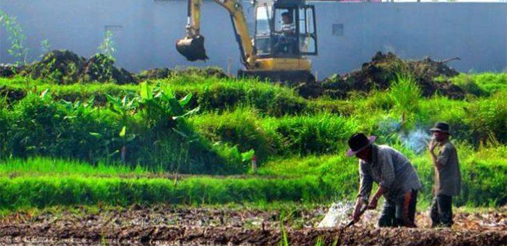 Seorang petani sedang mengolah tanaman padi di area persahawan di Cimahi.