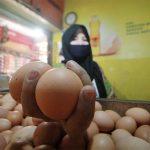 Pedagang-telur-ayam
