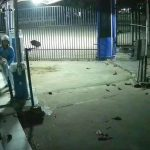 Polisi Tangkap Pelaku Pembakaran Pos Parkir Universitas Pelita Bangsa