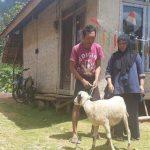 Domba diganti perbaikan kWh meter milik PLN di Garut (ist)