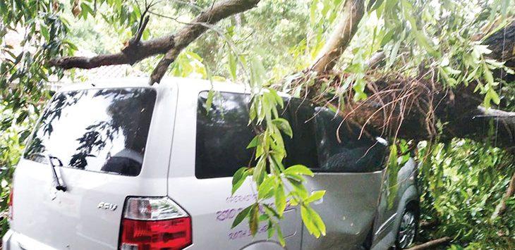Mobil dinas milik RSUD R Syamsudin SH ringsek setelah tertimpa pohon yang tumbang akibat angin kencang saat Kota Sukabumi diguyur hujan sejak sekitar Pukul 15.40 WIB, rabu (23/9/2020).
