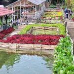 Wisata-Kabupaten-Bandung-Barat