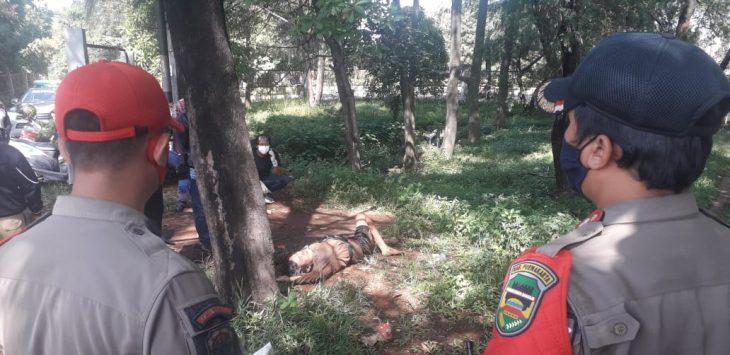Beberapa anggota yang berada di lokasi penemuan mayat, langsung mengamankan lokasi dengan cara di police line guna penyelidikan levih lanjut.