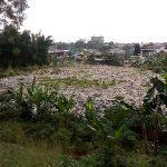 Tumpukan Sampah di Pinggir Kalimalang, Warga Bau Banget