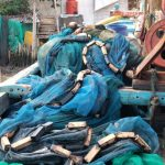 Pencemaran ikan di Karawang