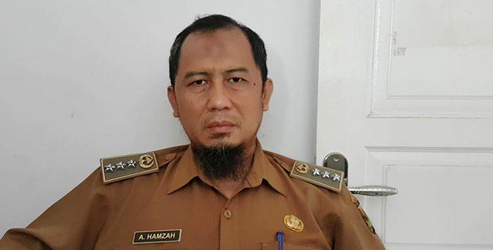 Camat Sukalarang, Amir Hamzah
